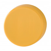 Hoppe Nylon Blank Escutcheon (pair) - Golden Yellow RAL1004